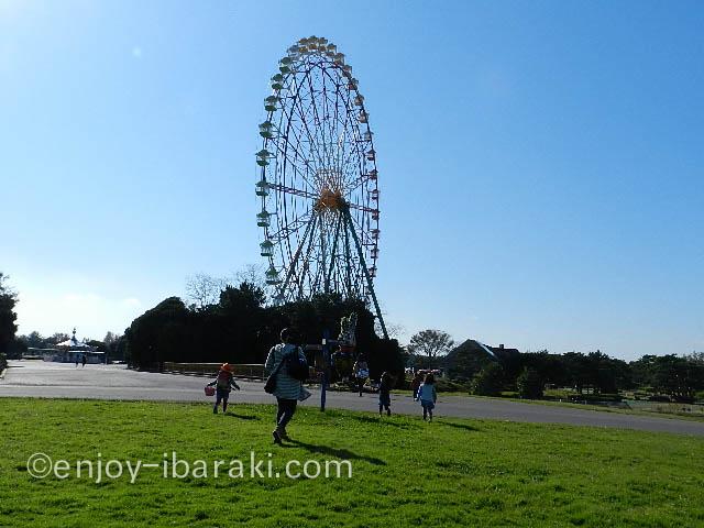 ひたち海浜公園〜観覧車
