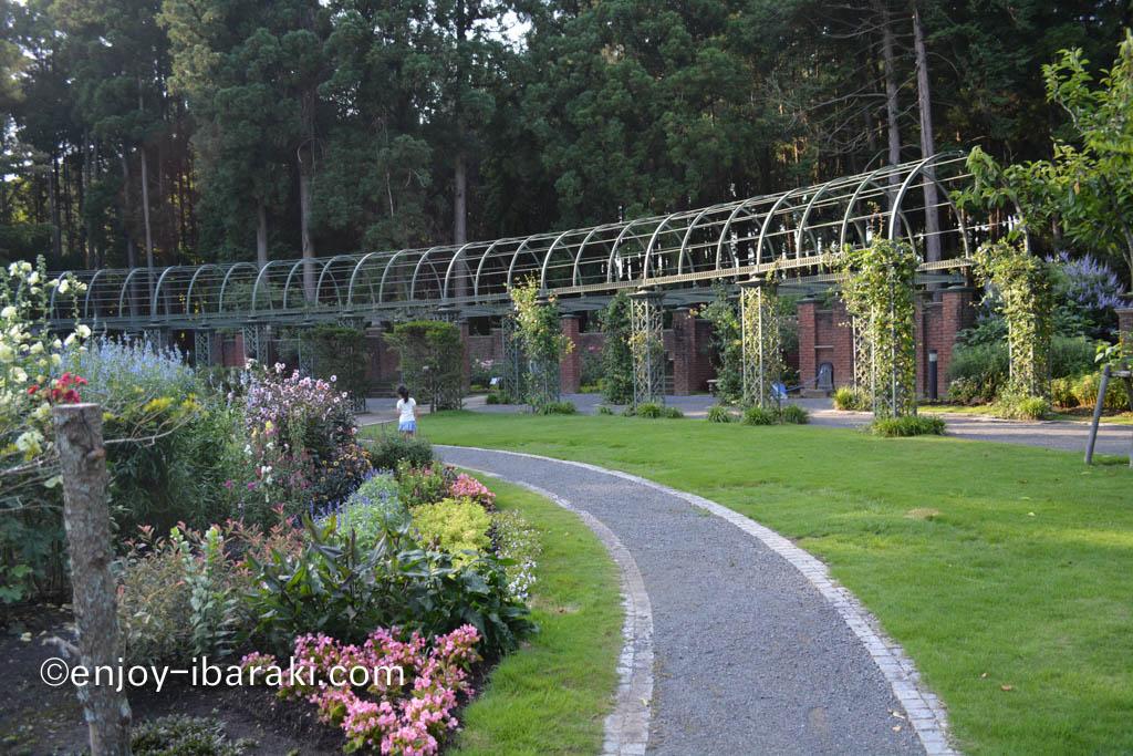 七ツ洞公園 秘密の花苑