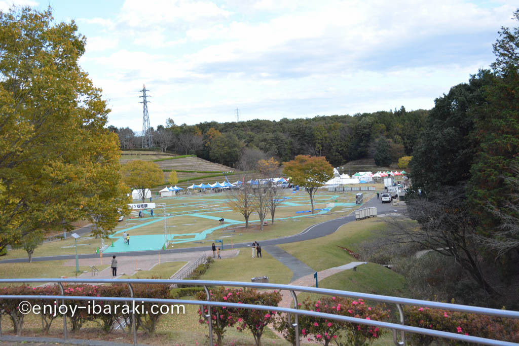 茨城をたべよう収穫祭のはずが・・