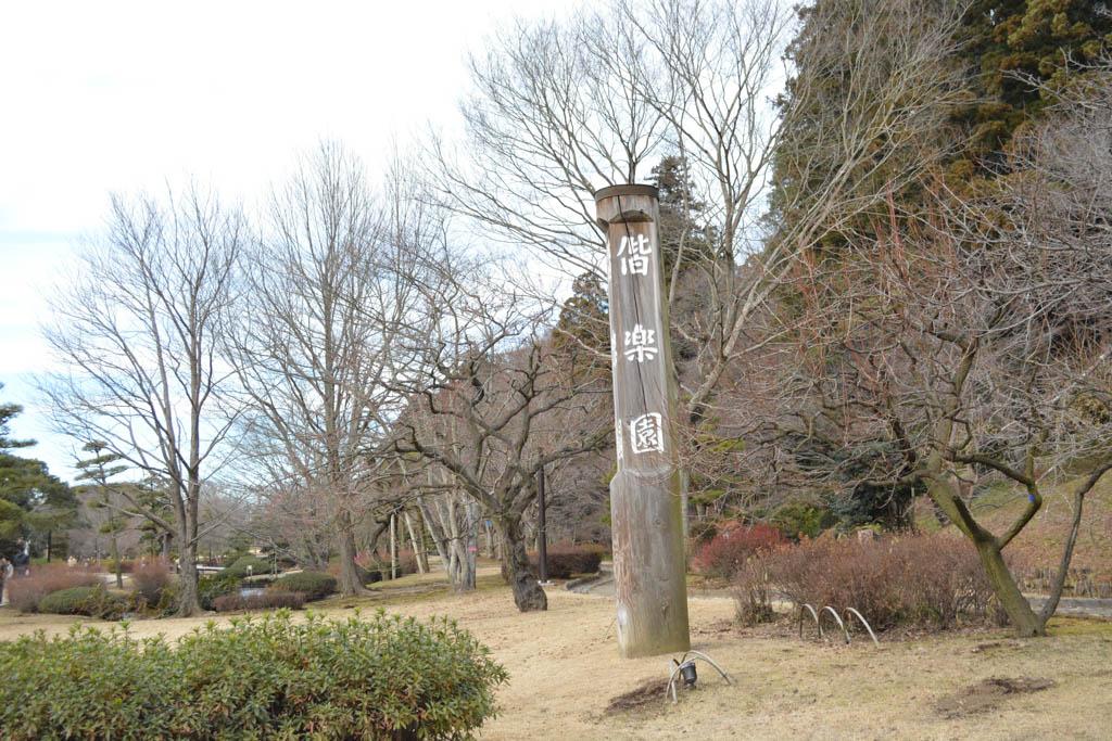 hatsumoude12