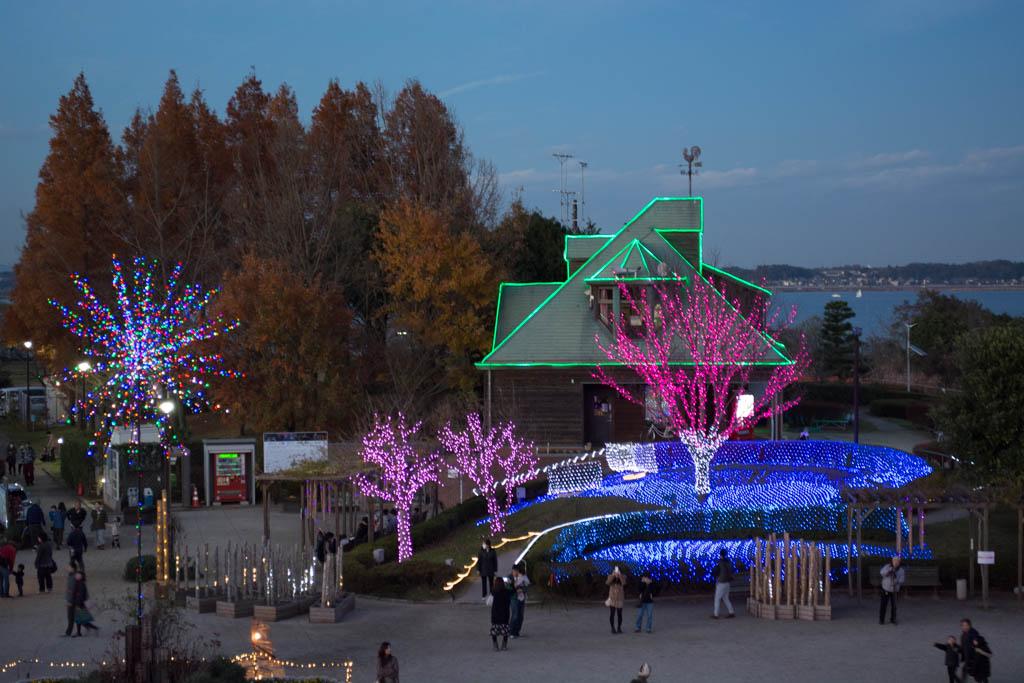 霞ヶ浦総合公園イルミネーション。