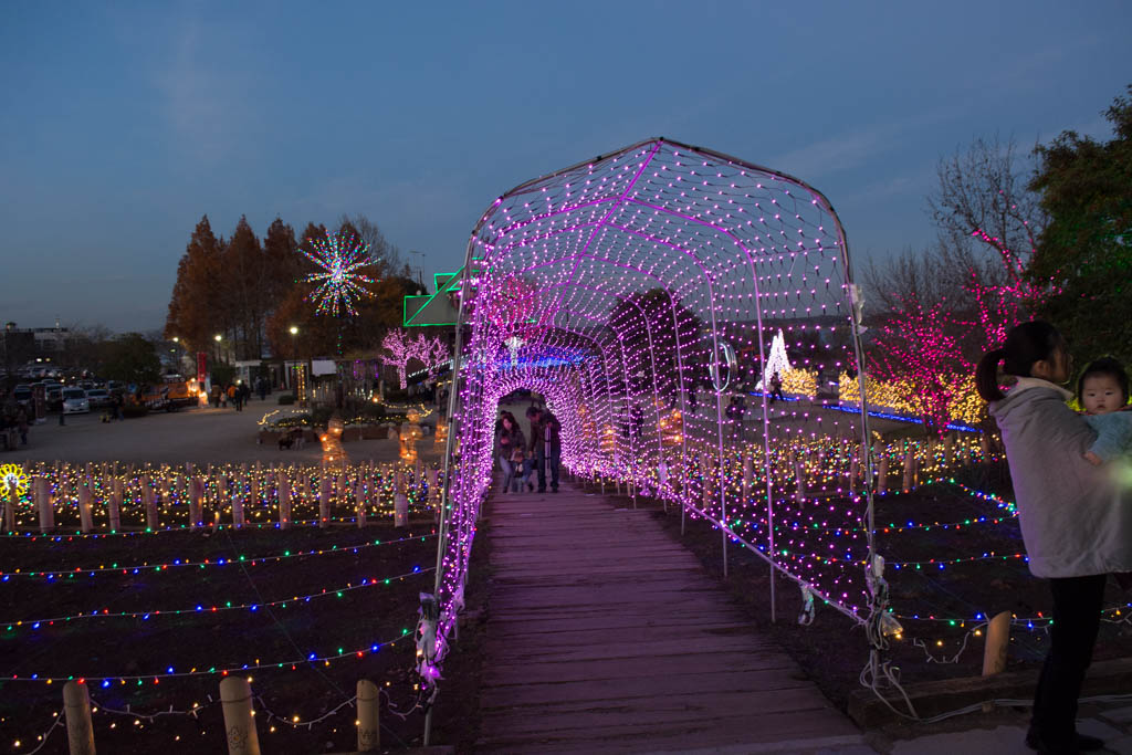 霞ヶ浦総合公園のイルミネーション。花火のアーチですね。