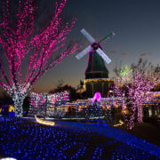 霞ヶ浦総合公園のイルミネーション。17時過ぎくらいに行くとちょうどいいかな?