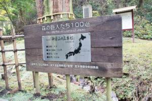 御岩神社森の巨人たち100選