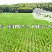 田植え・稲作体験