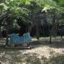 千波公園せせらぎ広場で水遊び(水戸市)